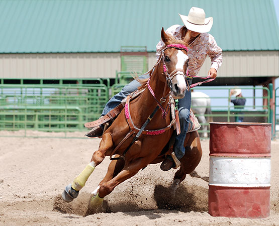 Canadian Barrel Horse Incentive Futurity & Derby